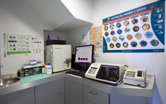 Clínica Veterinaria El Arca. Medicina Interna